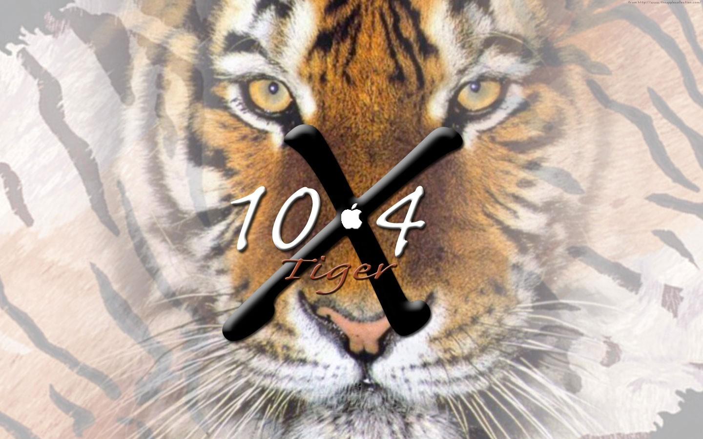 壁纸 动物 虎 老虎 桌面 1440_900