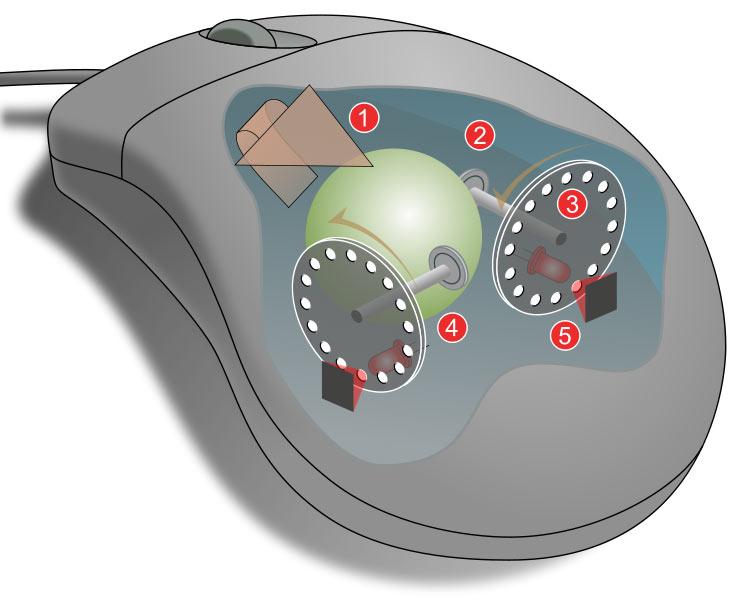 安卓和鼠标是什么原理_白带是什么图片